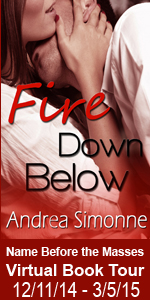 NBTM Fire Down Below Tour Book Cover Banner copy